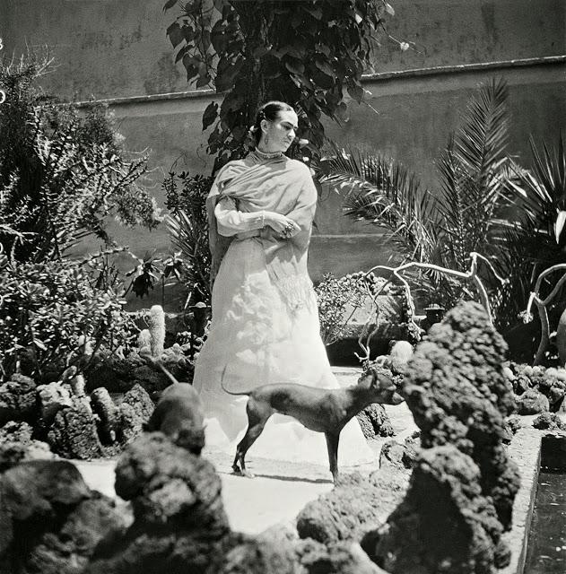 Gis_le_Freund_Frida_Kahlo_6_