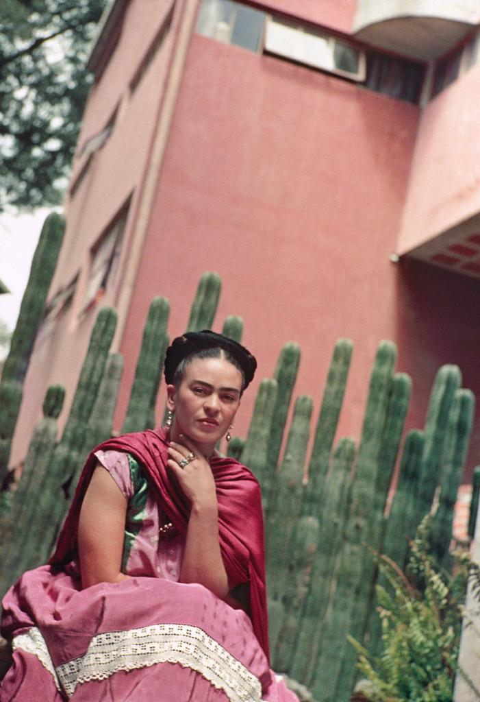 frida kahlo cactus fence ..
